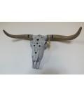 Rituální závěsná lebka býka / hlava býka, osvětlená