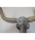 Rituální závěsná lebka býka / hlava býka